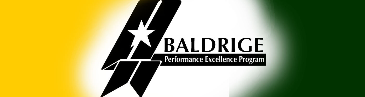 Process, Operation & Organizational Excellence : Baldrige Criteria