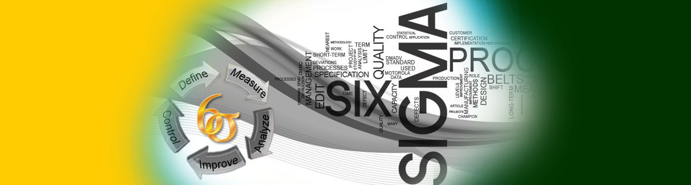 Process, Operation & Organizational Excellence : Lean Six Sigma Black Belt