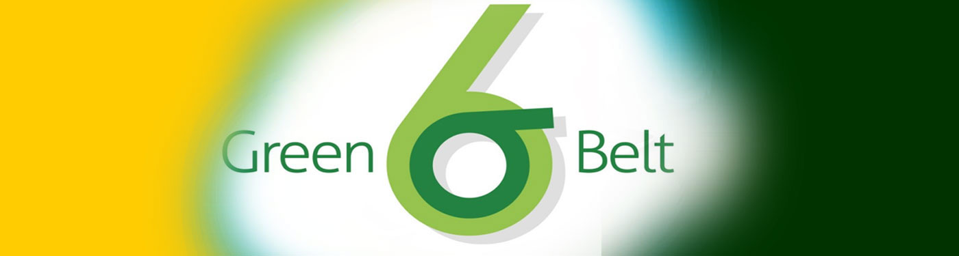 Process, Operation & Organizational Excellence : Lean Six Sigma Green Belt