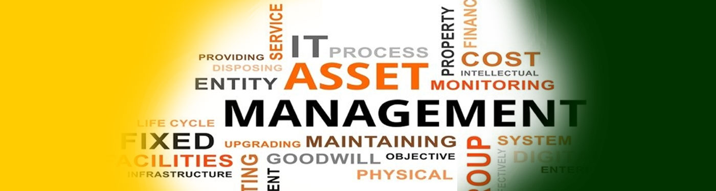 ISO 55001, Asset Management